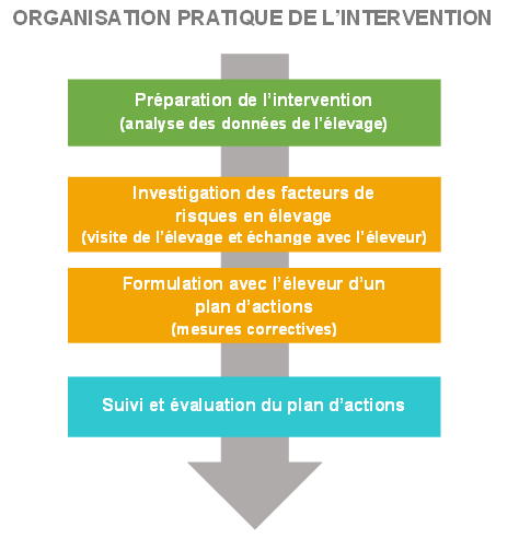 Organisation pratique de l'intervention